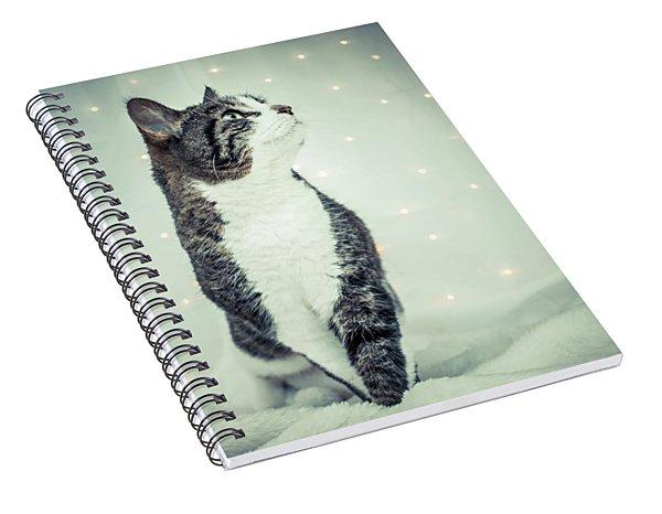 Lucy Spiral Notebook