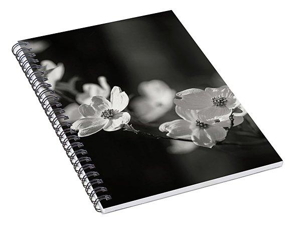 Missouri Dogwood Spiral Notebook