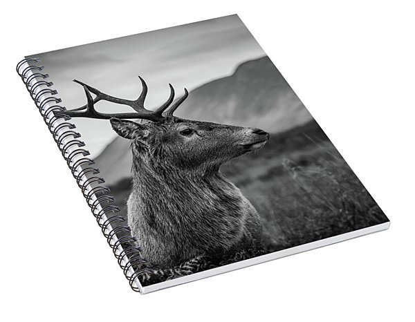 The Stag  Spiral Notebook