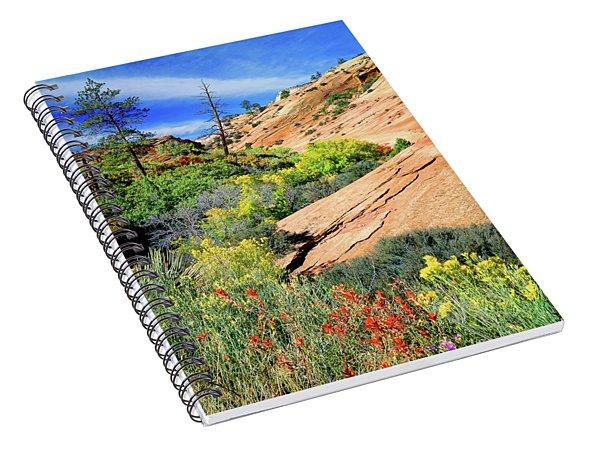 Zion Slickrock Spiral Notebook
