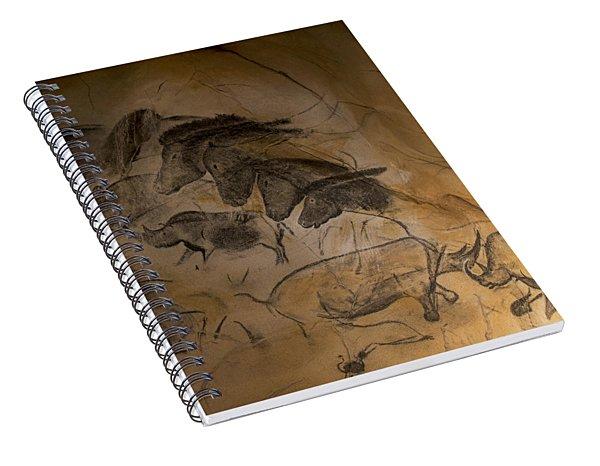 150501p086 Spiral Notebook