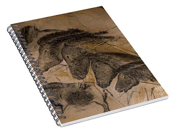 150501p087 Spiral Notebook