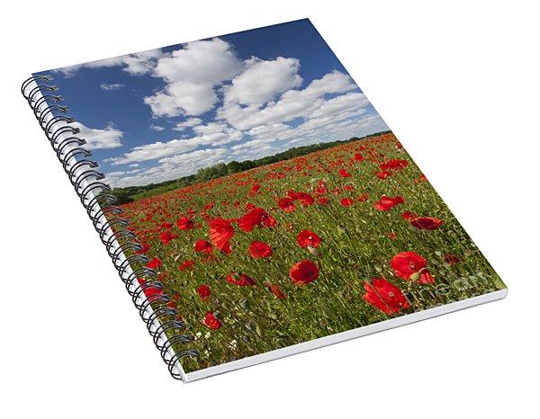 151124p076 Spiral Notebook