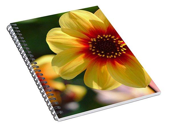 Autumn Flowers Spiral Notebook