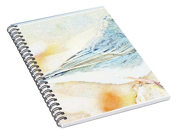Slate-colored Junco, Snowbird, Male, Animal Portrait Spiral Notebook