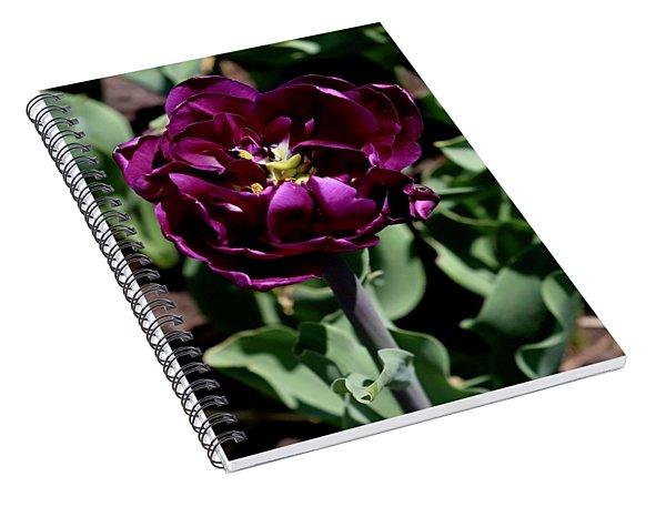 Tulip Spiral Notebook