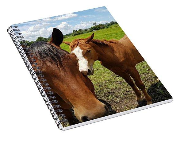 A Horse's Touch Spiral Notebook