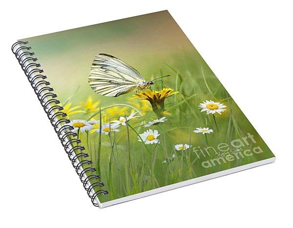 Light Wings Spiral Notebook