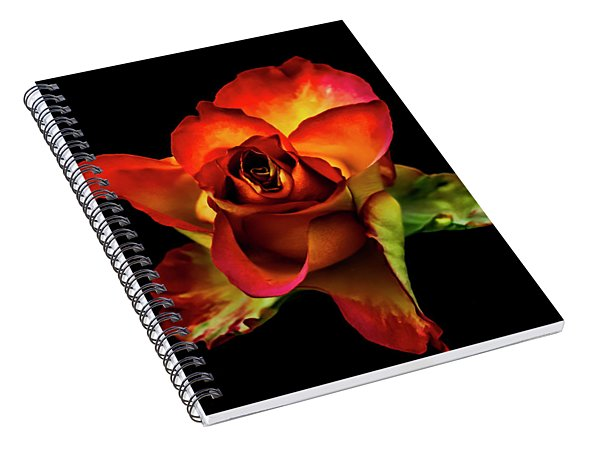 A Red Rose On Black Spiral Notebook
