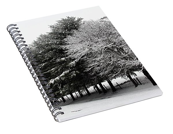 A Snowy Day Spiral Notebook