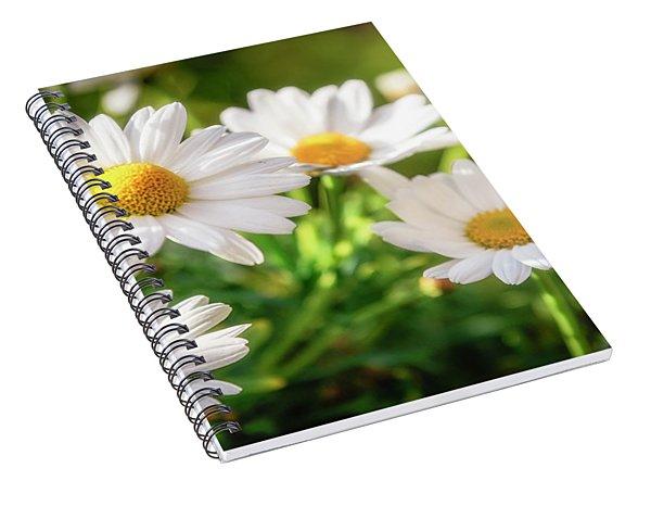 A Summers Day Spiral Notebook