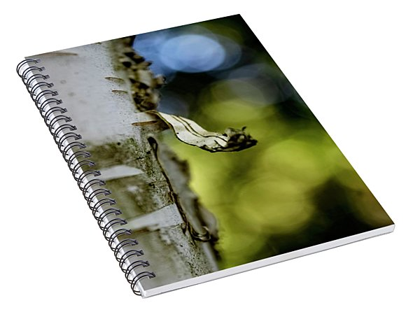 A Walk In The Woods Is Good For The Soul Spiral Notebook