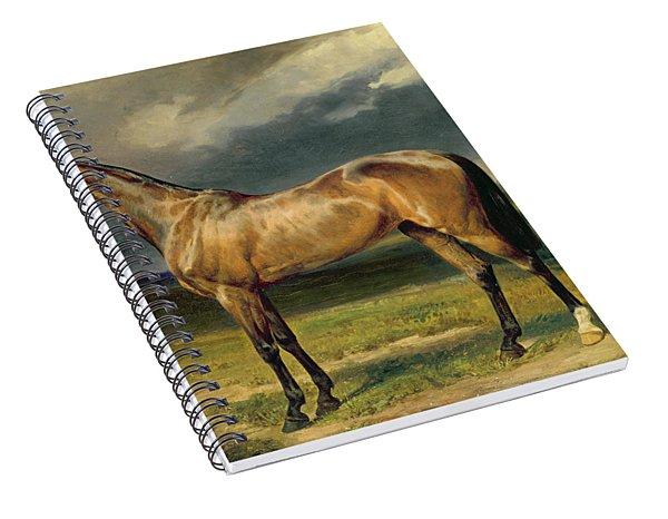Abdul Medschid The Chestnut Arab Horse Spiral Notebook
