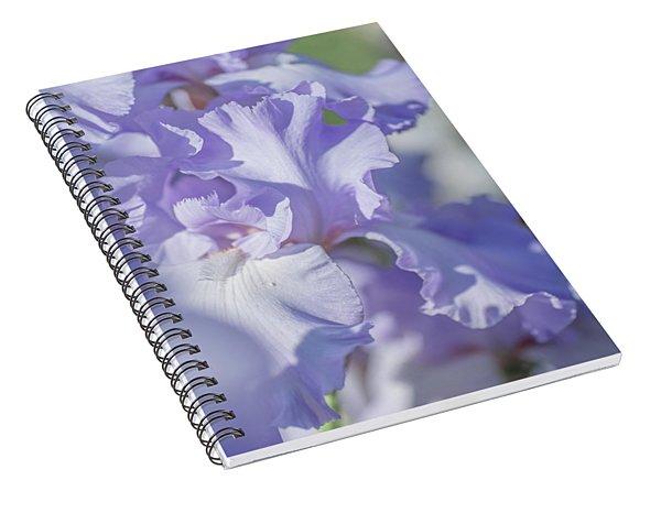 Absolute Treasure Closeup 2. The Beauty Of Irises Spiral Notebook