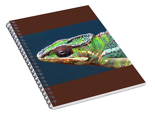 African Chameleon Spiral Notebook