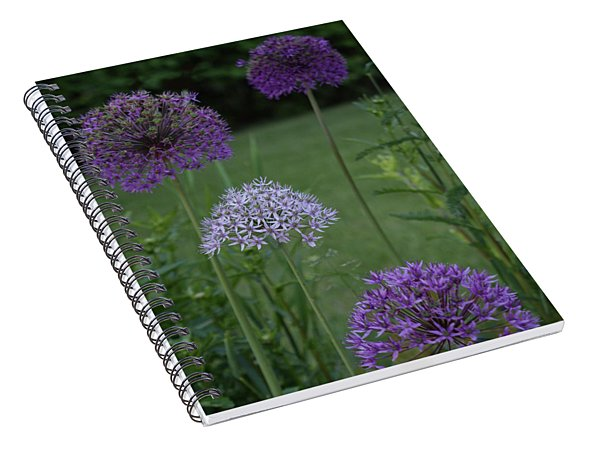 Allium Spiral Notebook