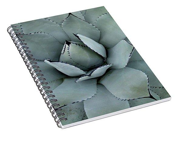 Agave Spiral Notebook