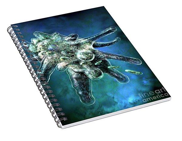 Amoeba Blue Spiral Notebook