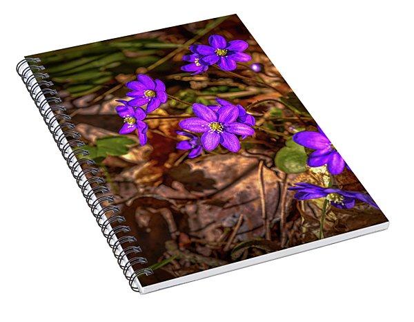 Anemone Hepatiea #g3 Spiral Notebook
