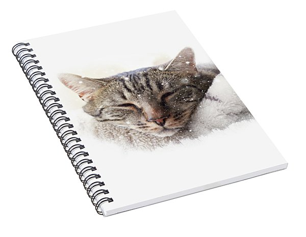 Cat And Snow Spiral Notebook