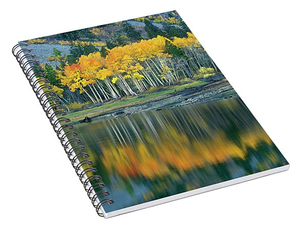Spiral Notebook featuring the photograph Aspens In Fall Color Along Lundy Lake Eastern Sierras California by Dave Welling