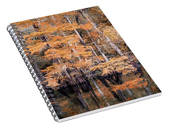 Autumn Along The Waccamaw Spiral Notebook