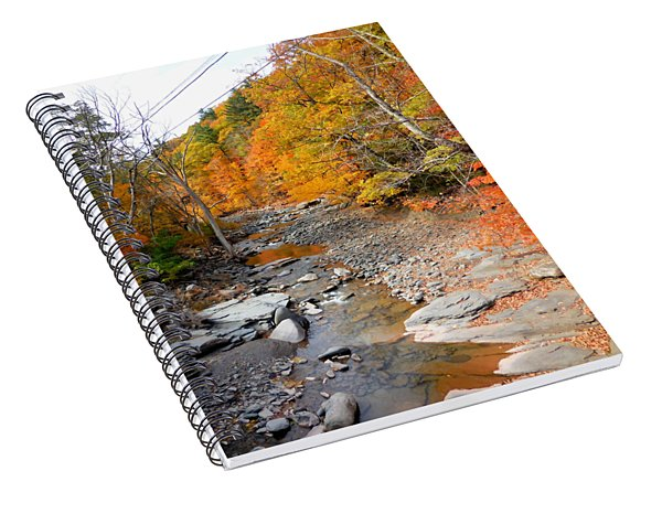 Autumn Creek 5 Spiral Notebook