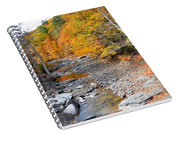 Autumn Creek 6 Spiral Notebook