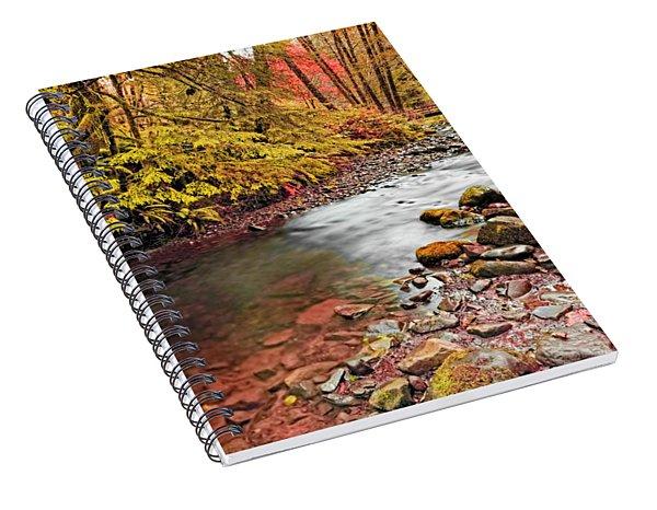 Autumn In An Oregon Rain Forest  Spiral Notebook