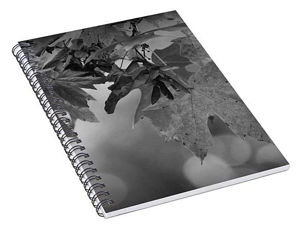 Autumn's Mystery Spiral Notebook