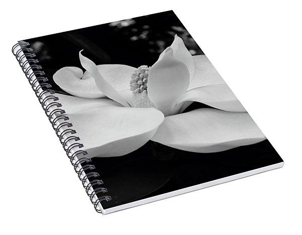 B W Magnolia Blossom Spiral Notebook