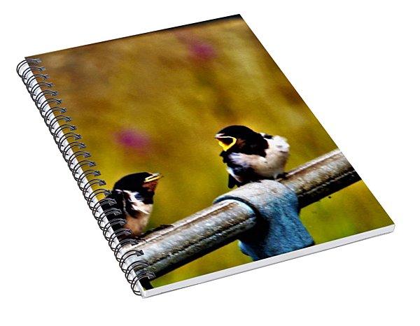 Baby Swallows Spiral Notebook