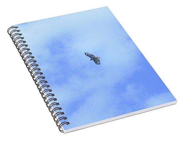 Golden Eagle In Flight Spiral Notebook