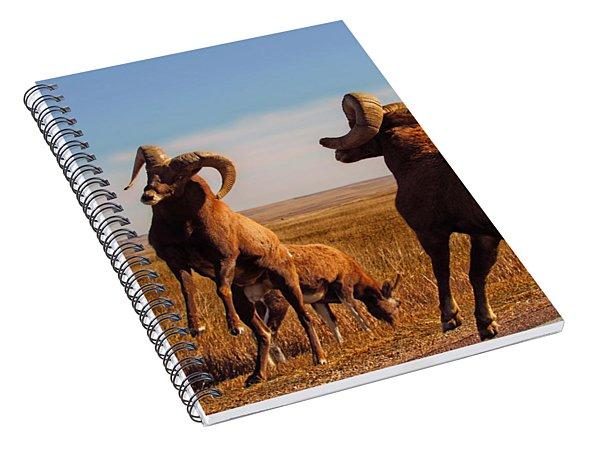 Bang Of The Bighorn Spiral Notebook