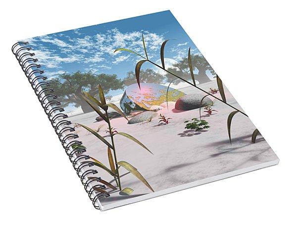Baobabs Spiral Notebook
