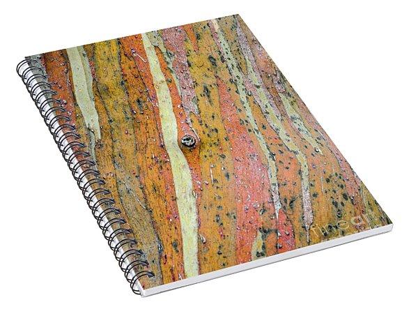 Bark Mf3 Spiral Notebook