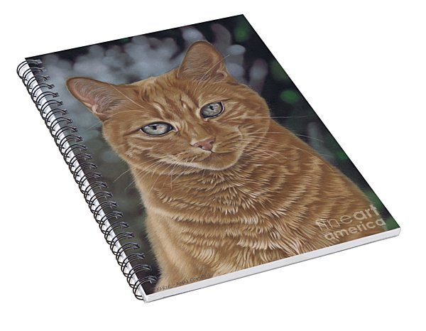 Barry The Cat Spiral Notebook