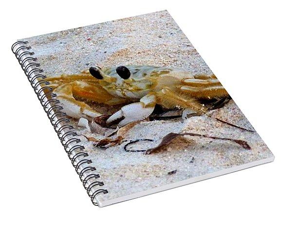 Beach Crab Spiral Notebook