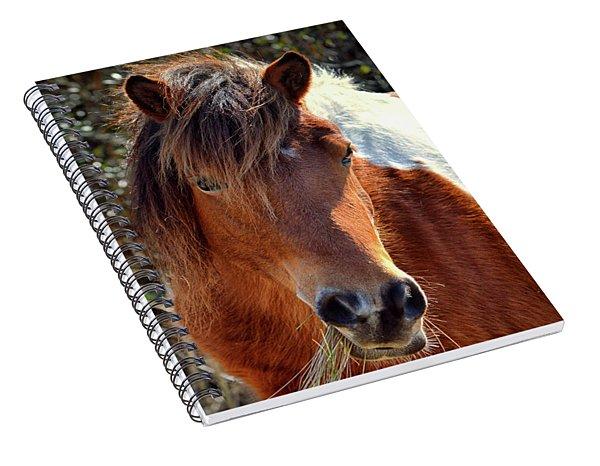 Beautiful Mare Ms. Macky Spiral Notebook