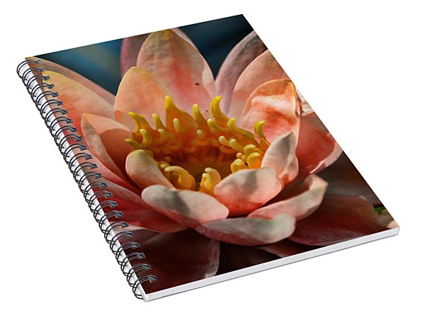 Beckoning The Sun Water Lily Spiral Notebook