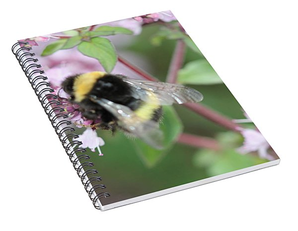 Bee Wings Spiral Notebook