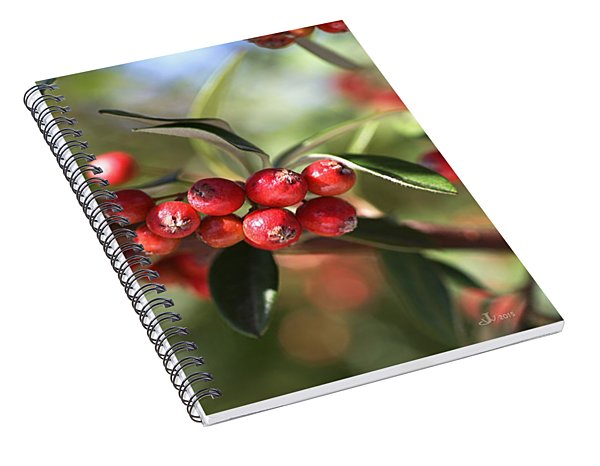 Berry Delight Spiral Notebook