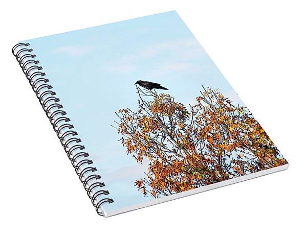 Bird On Tree Spiral Notebook