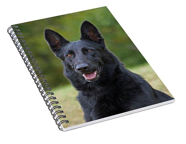 Black German Shepherd Dog Spiral Notebook