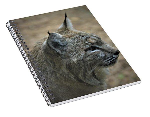 Bobcat In Profile Spiral Notebook