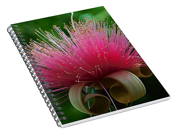 Brazilian Barbers Brush Spiral Notebook