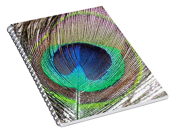 Bright Peacock Feather Spiral Notebook