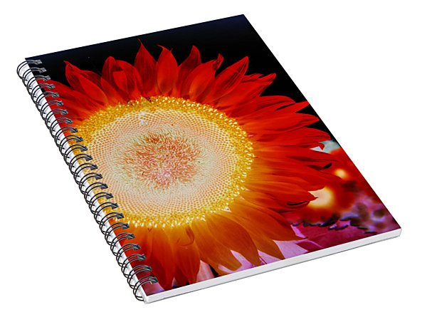 Brighter Than The Sun Flower Spiral Notebook