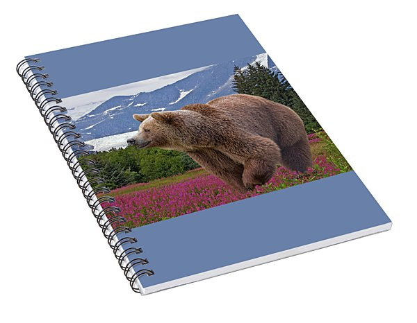 Brown Bear 2 Spiral Notebook