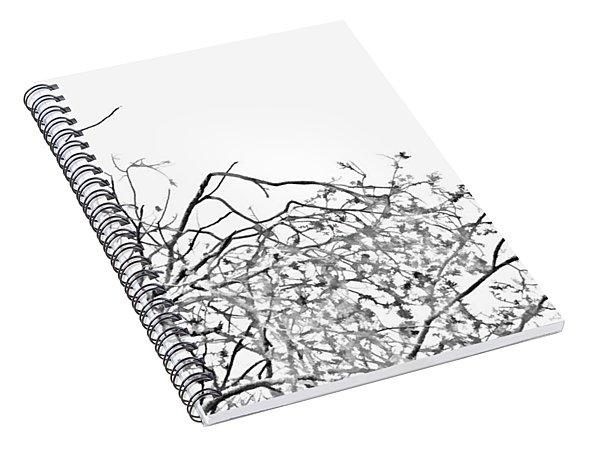 Brush Spiral Notebook